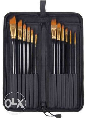 Paint brushes with case