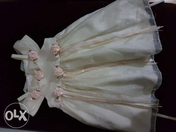 Cinderella dress from America