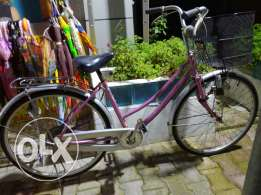 Rose italian style bicycle 26'