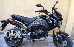 honda grom super clean!!!