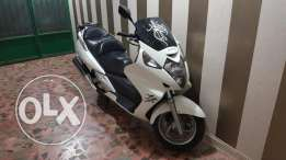 Silverwing 600