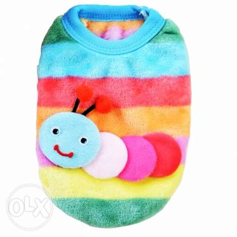colorful hoodie for teacups and puppies