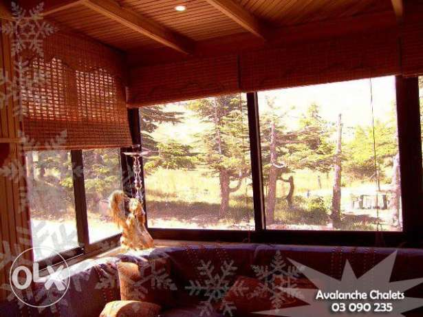 Avalanche Chalets - Chalet for Rent at Cedars-Al arz بشري -  4