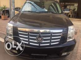 Cadillac Luxury Escalade 1 of a kind