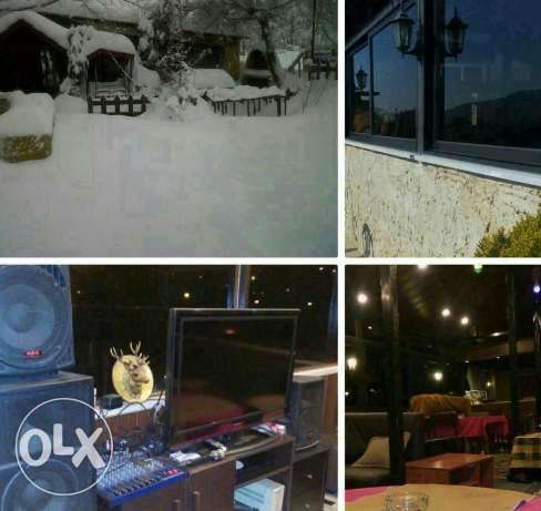 Chalet for groups-faraya-special occasions