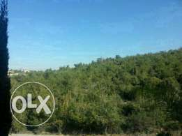 land for sale at mechref 2050 m