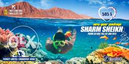 New Year Tour to Sharm El Shaikh 5 Days / 4 Nights only For 585 Usd
