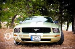 Ford mustang green 2005