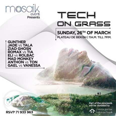 """Tech on grass"" by mosaik events"