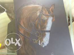 horse pencil drawing 200$