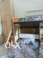 Foyer for girls in new rawda. 150$/bed