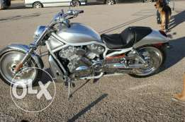 Harley Davidson V-rod 2003 model