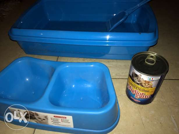 litter box + food plate + cat food can