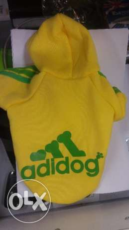 Adidog Yellow Sweater