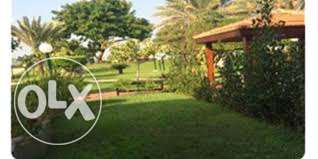"1 of 19 SAMAYA best located chalet on Gazon "" green area & Gazebo"""
