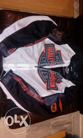 Harley davidson fit on xl