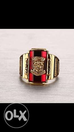 Gold Large Red Stone 1973 Tigers Head ring for men