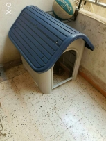 Dog house with removable floor