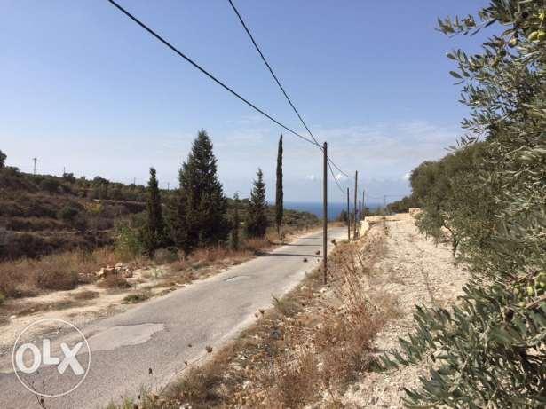 land for sale in barghoun - koura الكورة -  2
