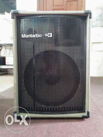 2 Identical Montarbo Self-amplified Speakers