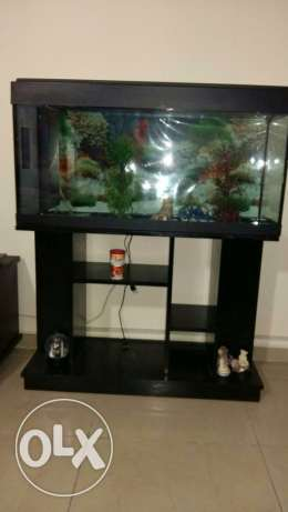 Aquarium with stand black