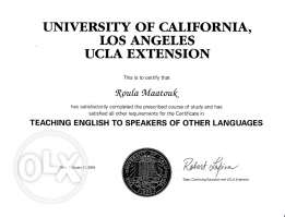 Tutor for YOU - K-12 & Uni - Specialization in English & Writing