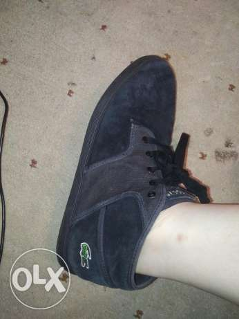 Original lacoste shoes