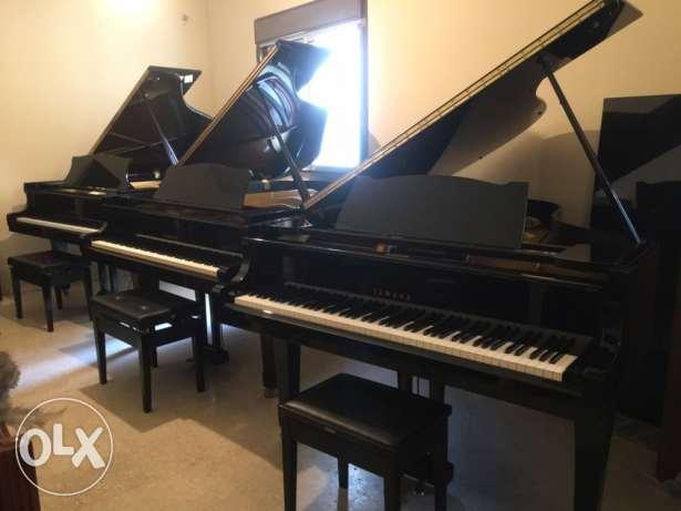 piano starting from 1600$