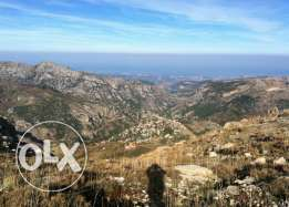 Land for sale in Tanourin, Chekka