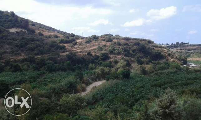 land for sale in Damour