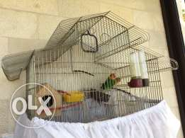 for sale joz ramag ma3 afason