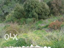 Land for sale in Bashamoun