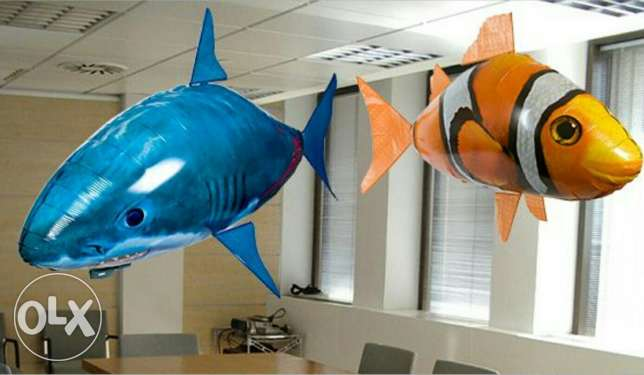 Flying Fish & Shark