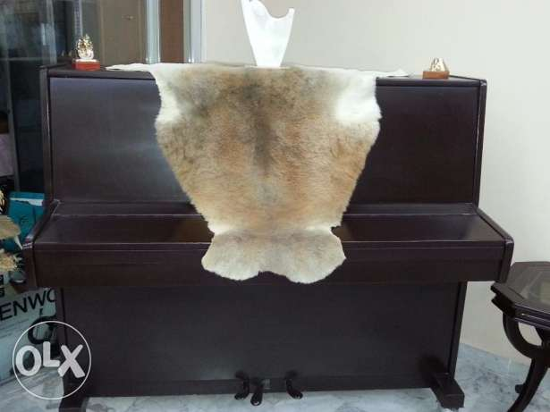 Russian Piano in Excellent condition for sale