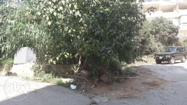 hot deal shaileh land for sale best price