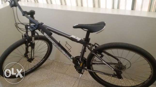 silverback bicycle for sale