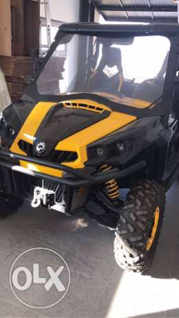 buggy can am for sale 1000cc