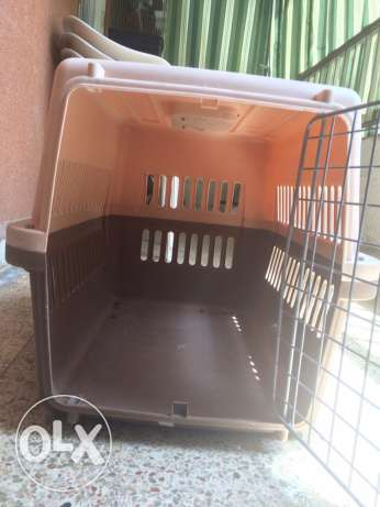 dog house/cage