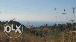 Land for sale in edde jbeil