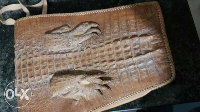 Crocodile Leather and Snake Leather