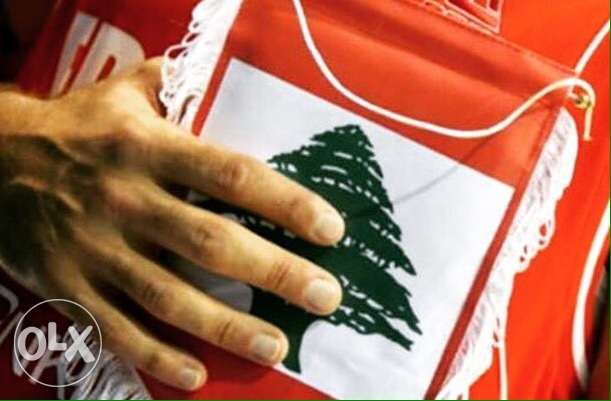 Lebanese Businessman Looking for a job in Lebanon