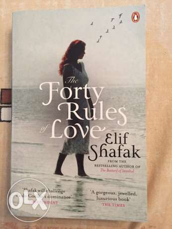 The Forty Rules of love & The timy wife