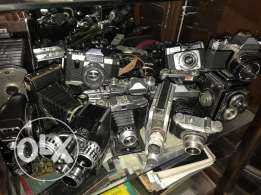 collection of vintage cameras