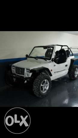 UTV/buggy/ATV/mini jeep