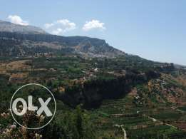 Land for sale Ghabat Rweiss