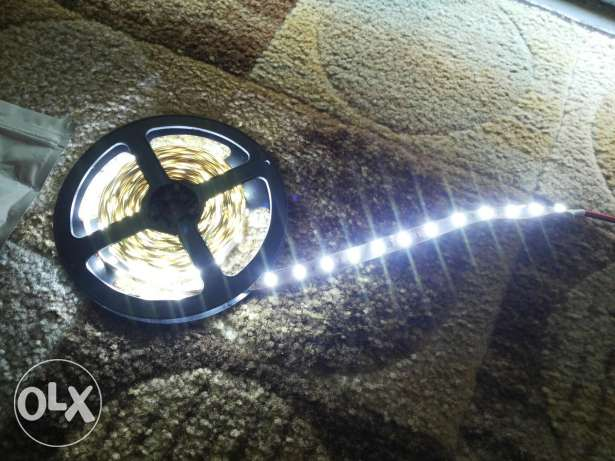 White Led 5 m 12volt