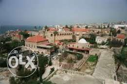 I'm looking to rent apart, in byblos old town,