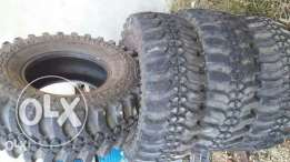 maxxis 31x10.5 tires