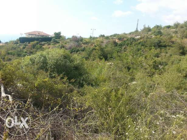 land for sale at mechref 1049 m