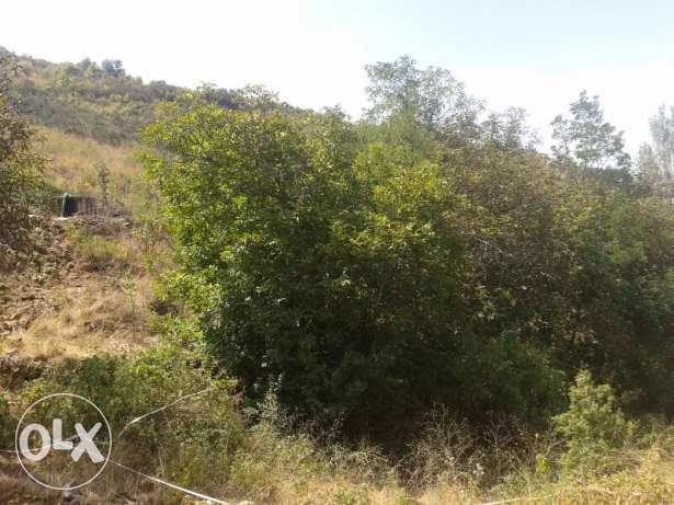 Land for sale 3200 m